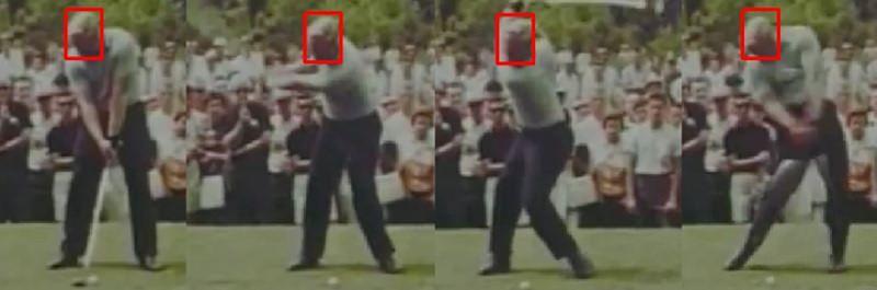 Connu pour être un golfeur à la « tête froide », il fait partie de ces joueurs qui ne déplacent quasiment pas la tête pendant tout le mouvement.