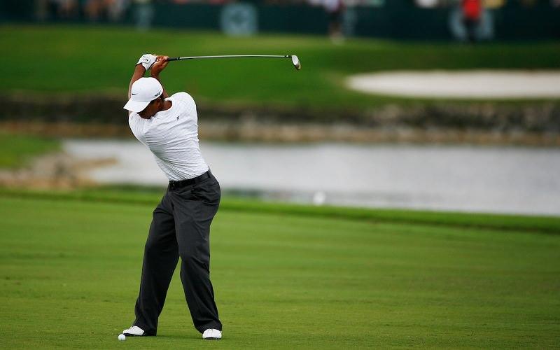L'idée de ce sujet est venue à la suite de la visualisation récente d'une vidéo du swing de Tiger Woods