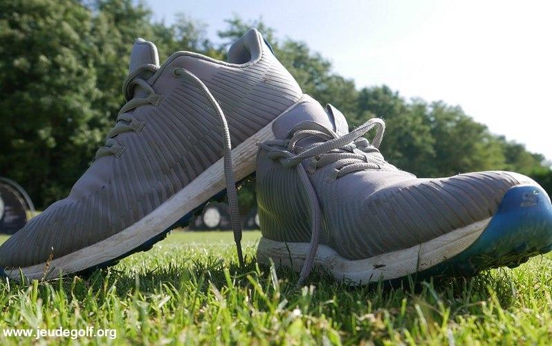 Revue des chaussures de golf Sketchers Go Golf Max