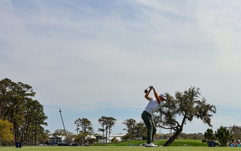 Choisir la bonne position pour placer sa balle de golf sur un tee de départ