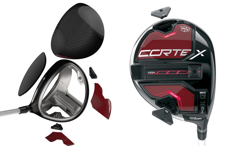 Wilson-Cortex.png