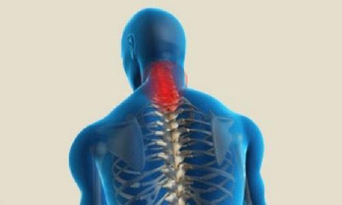 La septième cervicale se situe à la base du cou.