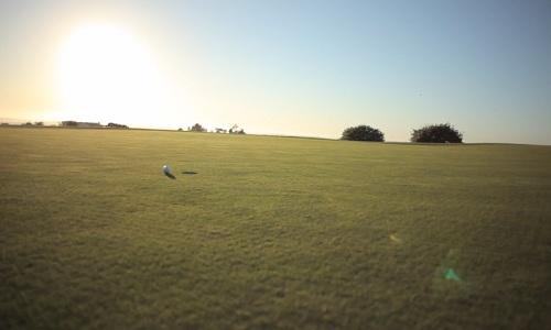 Entretien d'un parcours de golf? Un calendrier chargé sur 12 mois!