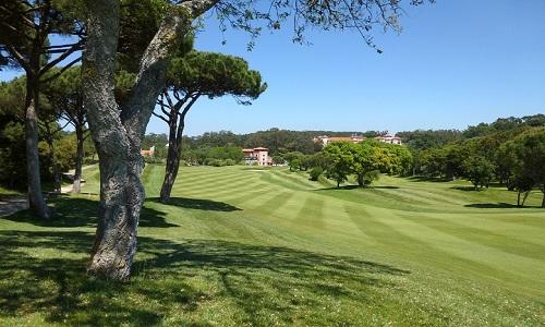 Golf près de Lisbonne : Penha Longa