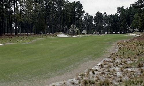 pinehurst-10.jpg