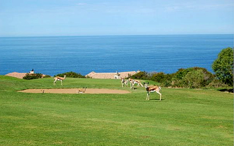 Photo : Mossel Bay Golf Club