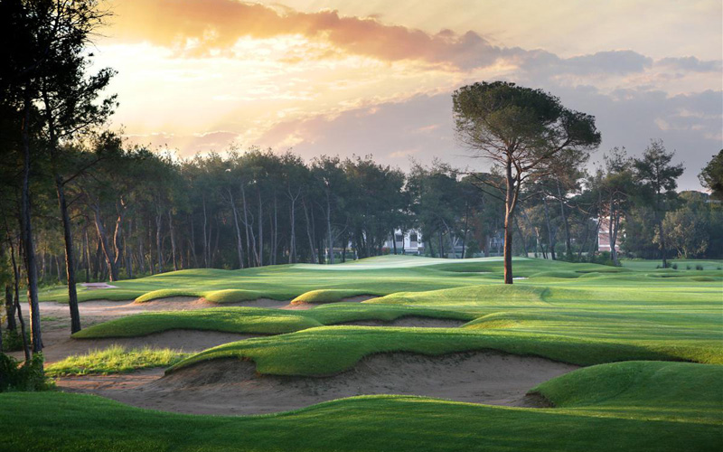 Credit photo : The Montgomerie Maxx Royal