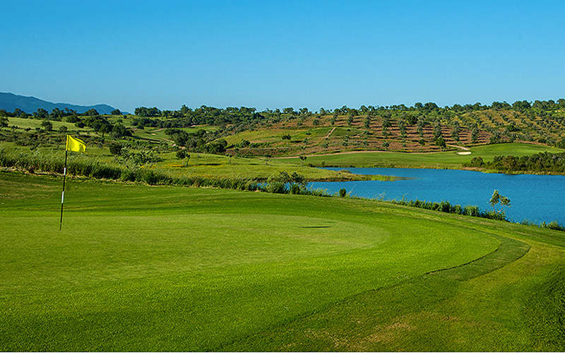 Credit photo : Alamos Golf