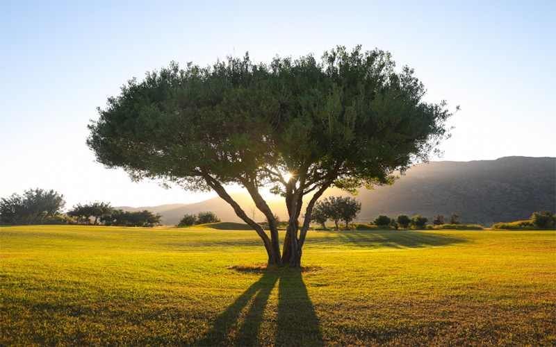 Crédit photo : Crète Golf Club