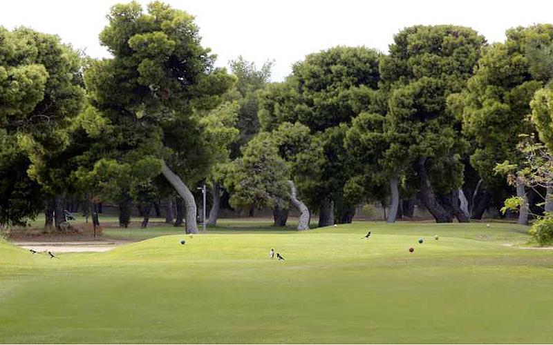 Photo Glyfada Golf Course