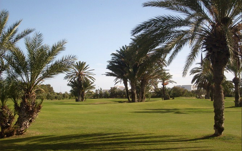 Credit photo : Palm Links Golf Course
