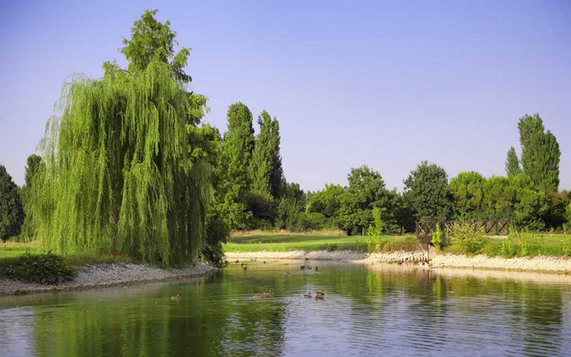 Photo Golf della Montecchia