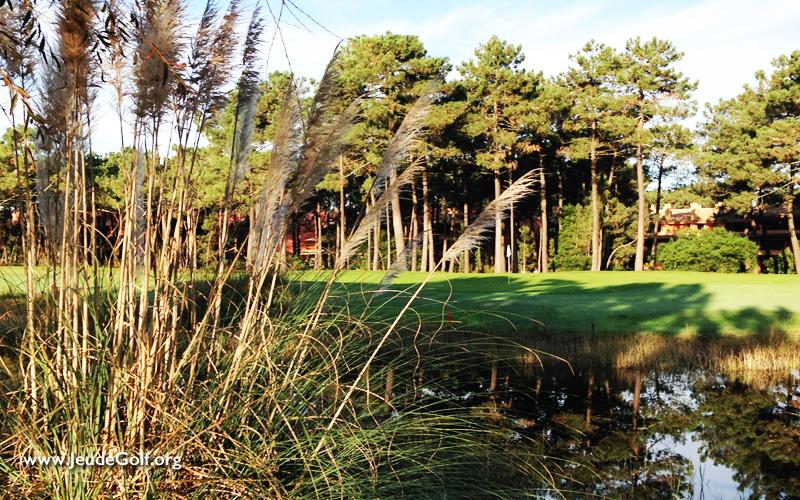 La recherche confirme la plus-value environnementale des parcours de golf