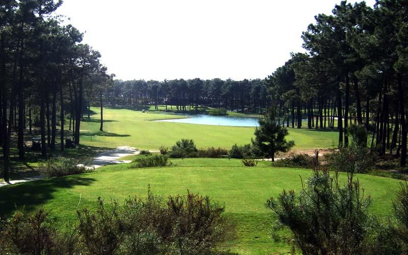 Le printemps arrive, on reprend le golf…
