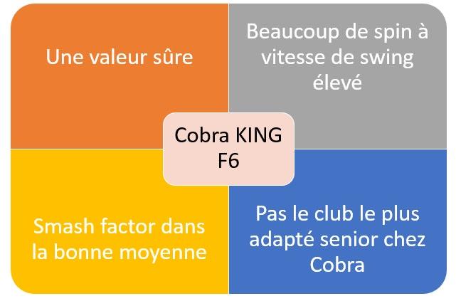 Bilan du test Cobra King F6